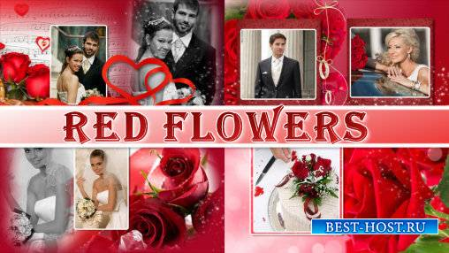 Red flowers - project for ProShow Producer