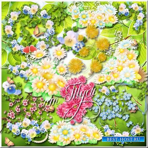Летний цветок он, как солнышко, яркий - Клипарт