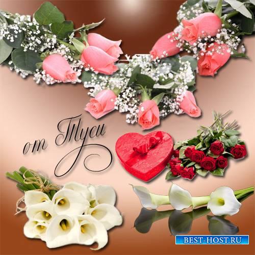 Клипарт – Нежность цветов
