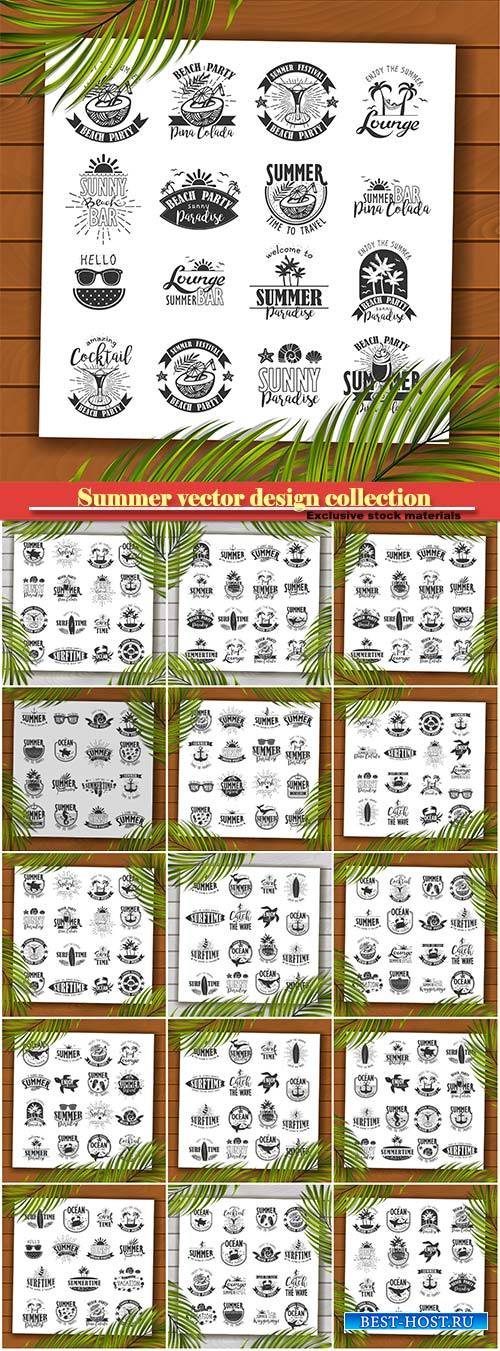 Summer vector typography design collection