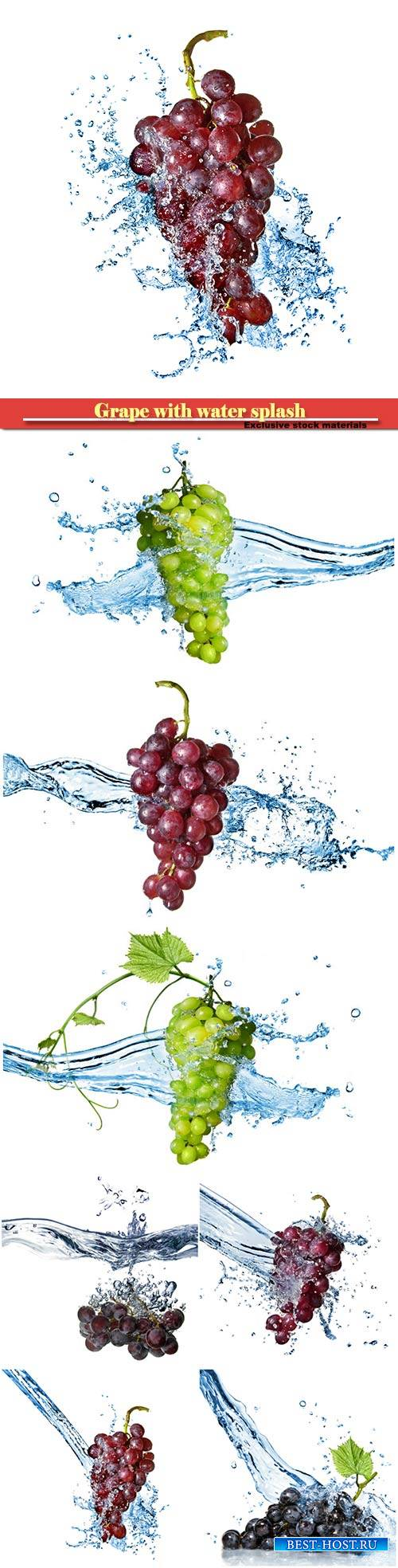 Grape with water splash isolated on white background