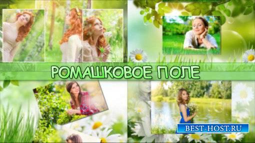 Ромашковое поле - project for ProShow Producer