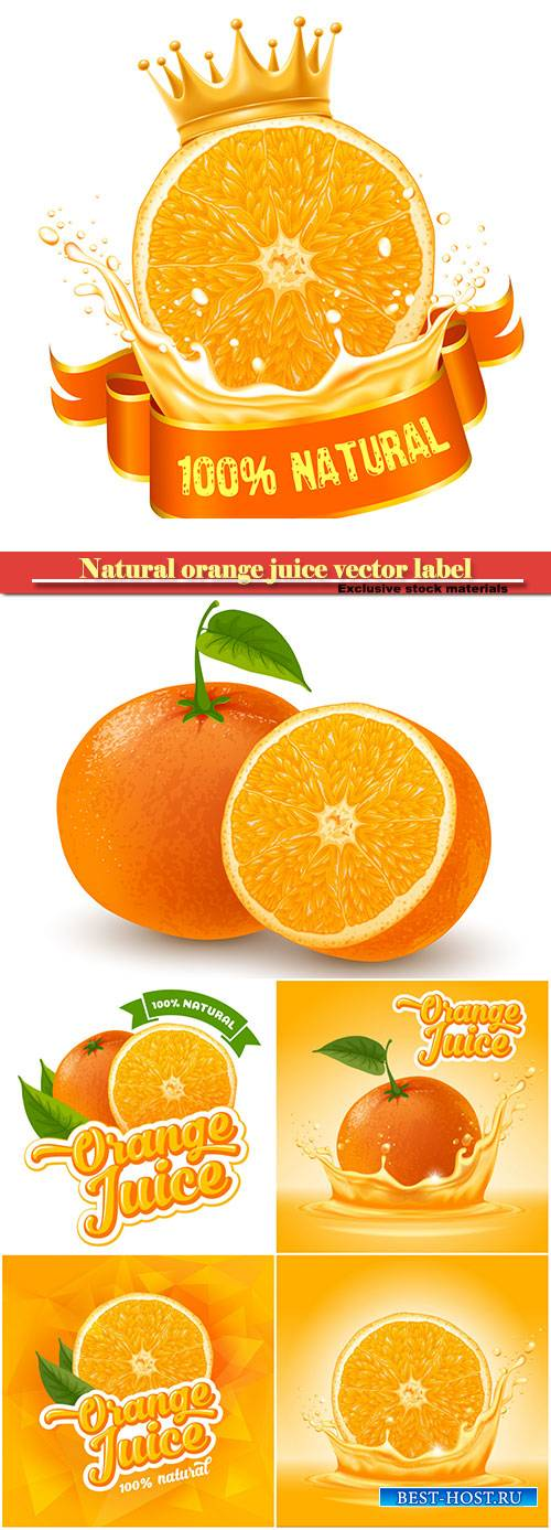 Natural orange juice vector label design template, fresh fruit with splash