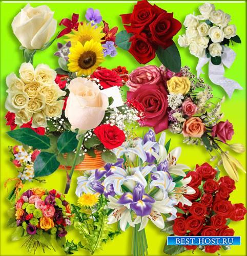 Картинки на прозрачном фоне - Море цветов и растений