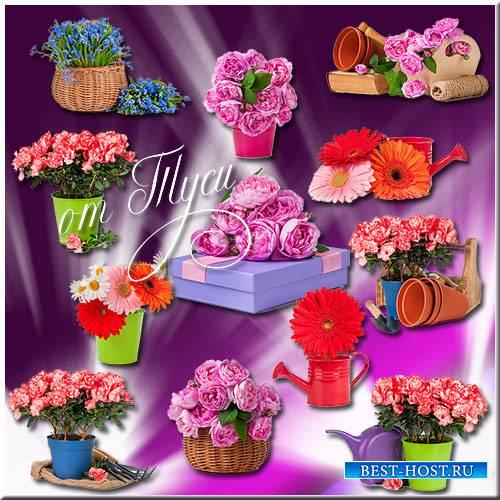 Поэзия цветочной красоты - Клипарт