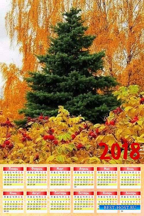 Календарь на 2018 год - Красота осени