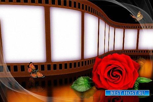 Рамка photoshop - Кинопленка с красной розой