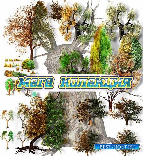 Png формат - Разные деревья