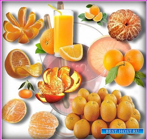 Растровый клипарт - Цитрусовые витамины