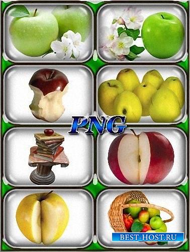 Клипарты на прозрачном фоне - Яблоки разных сортов