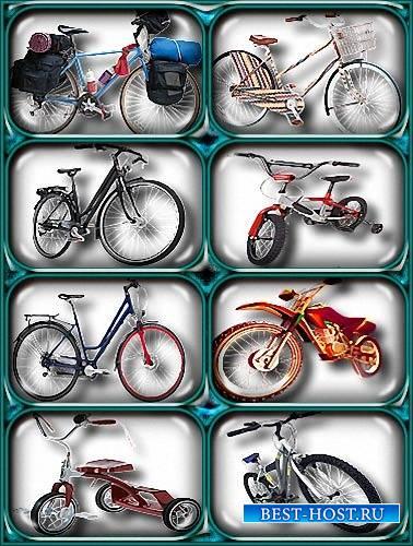 Png картинки - Велосипеды