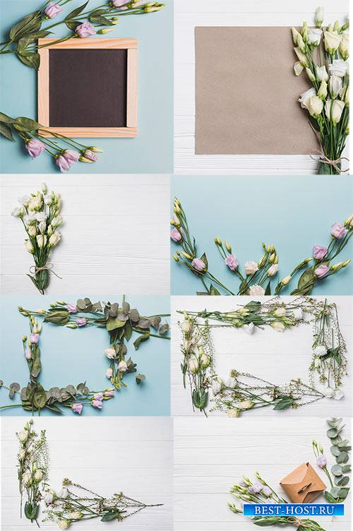 Клипарт - Белые розы / Clipart - White roses