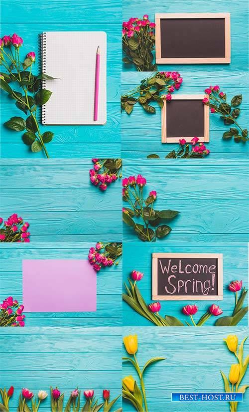 Весенние фоны с розами и тюльпанами / Spring backgrounds with roses and tul ...