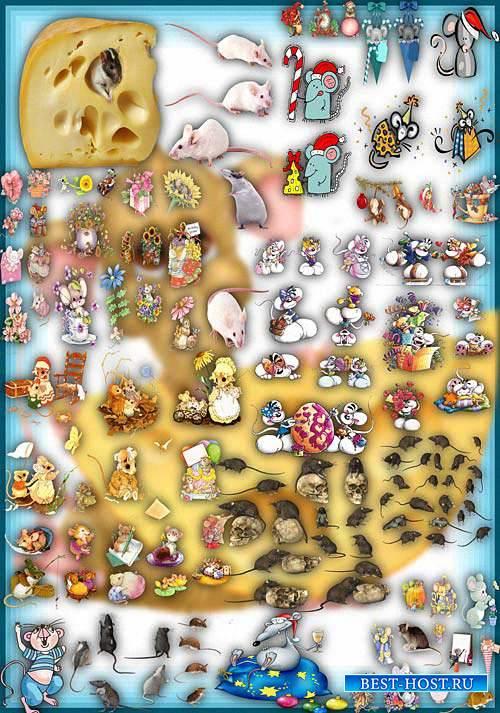 Клип-арты на прозрачном фоне - Серые и белые мыши