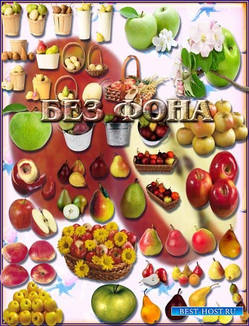Клип-арты на прозрачном фоне - Яблоки и груши