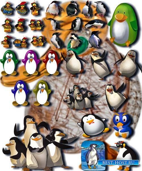 Коллекция Png клипартов - Веселые пингвины