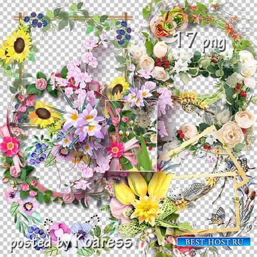 Подборка цветочных png рамок-вырезов для дизайна - Цветочная коллекция 2