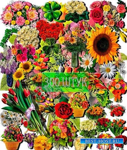 Коллекция Png клип-артов - Разнообразные цветы