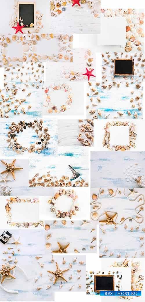 Фоны с морскими ракушками / Backgrounds with sea shells