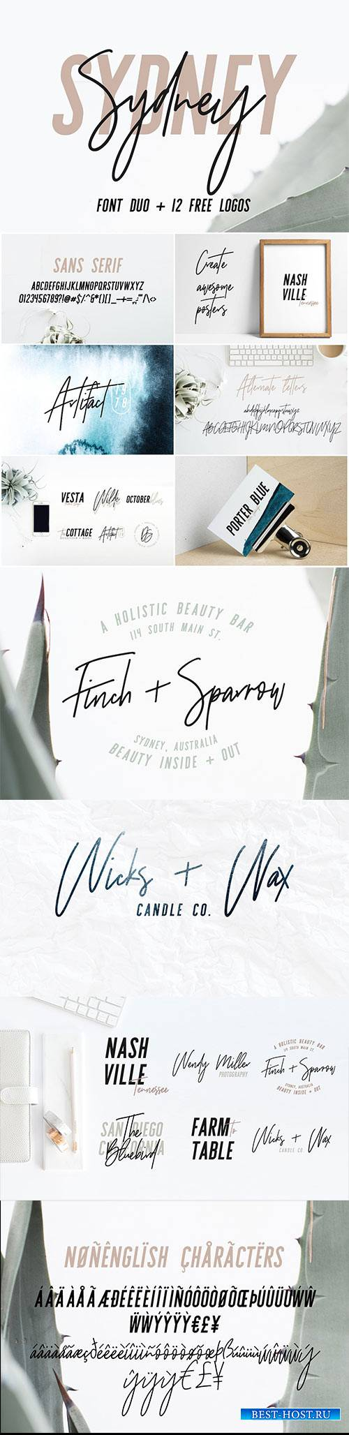 CM - Sydney | Font Duo + 12 Free Logos 1699086