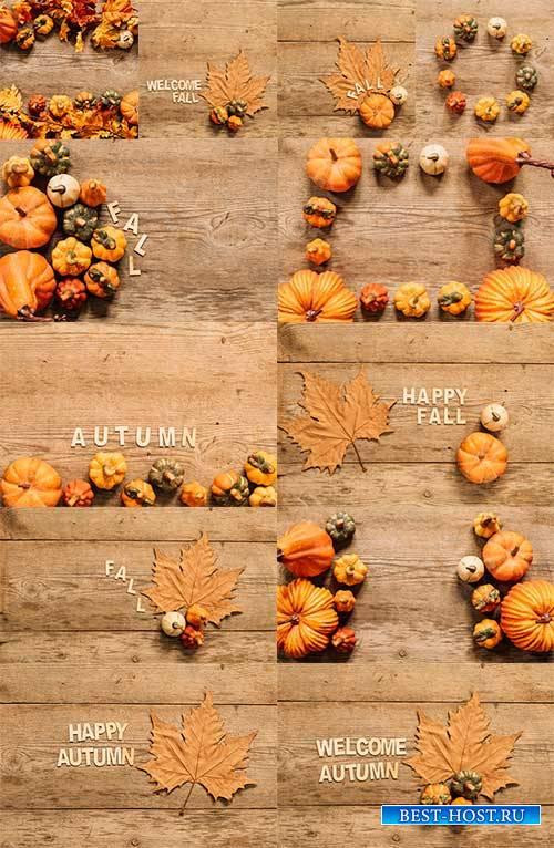 Краски осени -5 - Растровый клипарт / Autumn colors - 5 - Raster clipart
