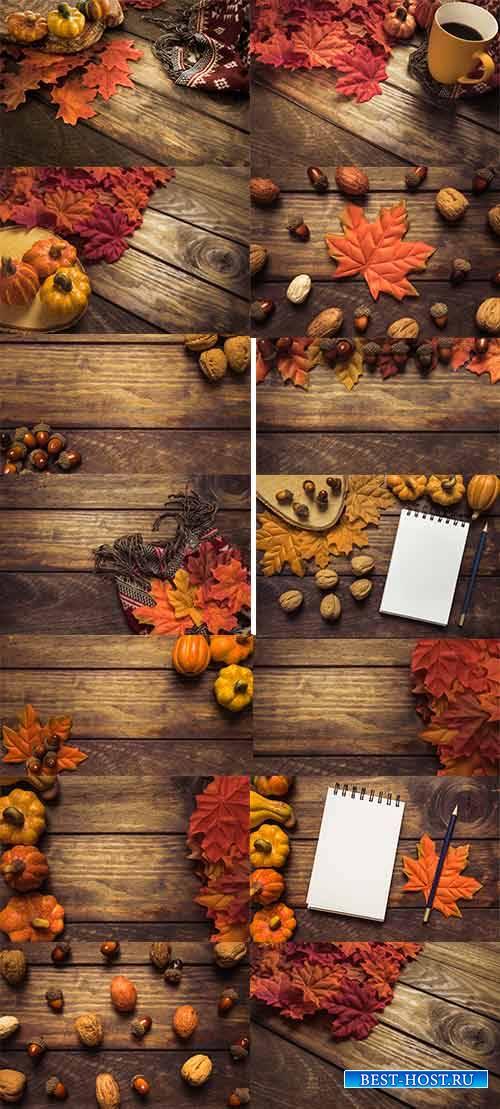 Краски осени -6 - Растровый клипарт / Autumn colors - 6 - Raster clipart