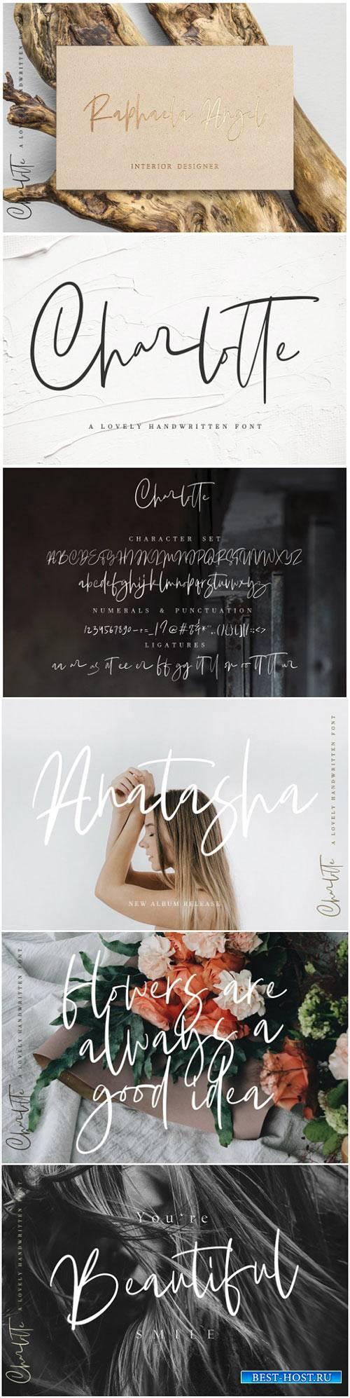 CreativeMarket Charlotte | Handwritten Font 2993745