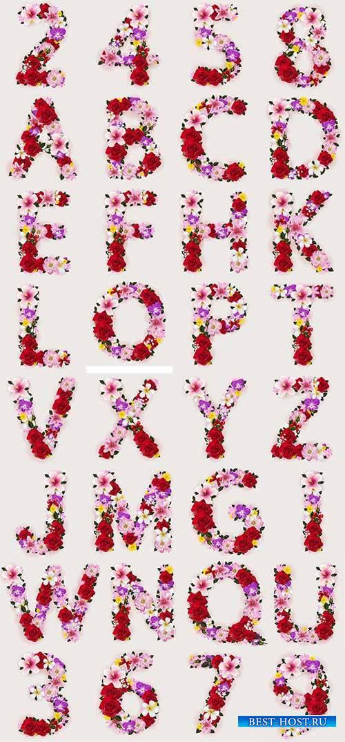 Цветочные цифры и буквы в векторе / Floral numbers and letters in vector