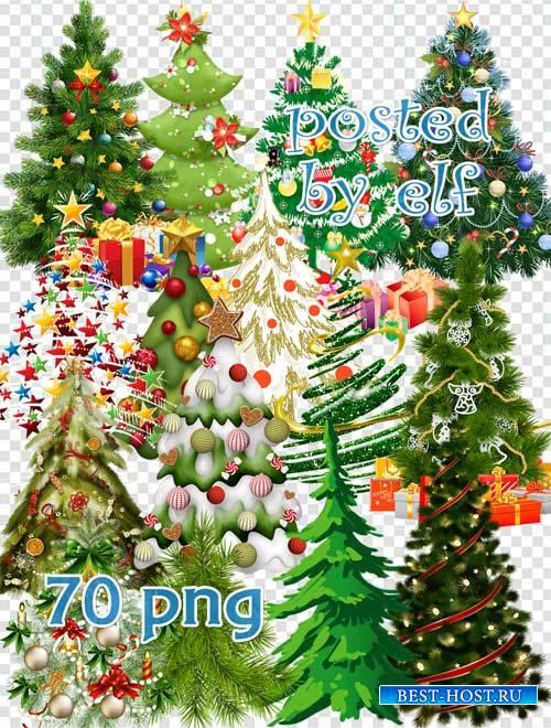 Новогодние и зимние елки - клипарт в PNG