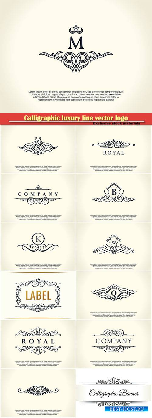 Calligraphic luxury line vector logo