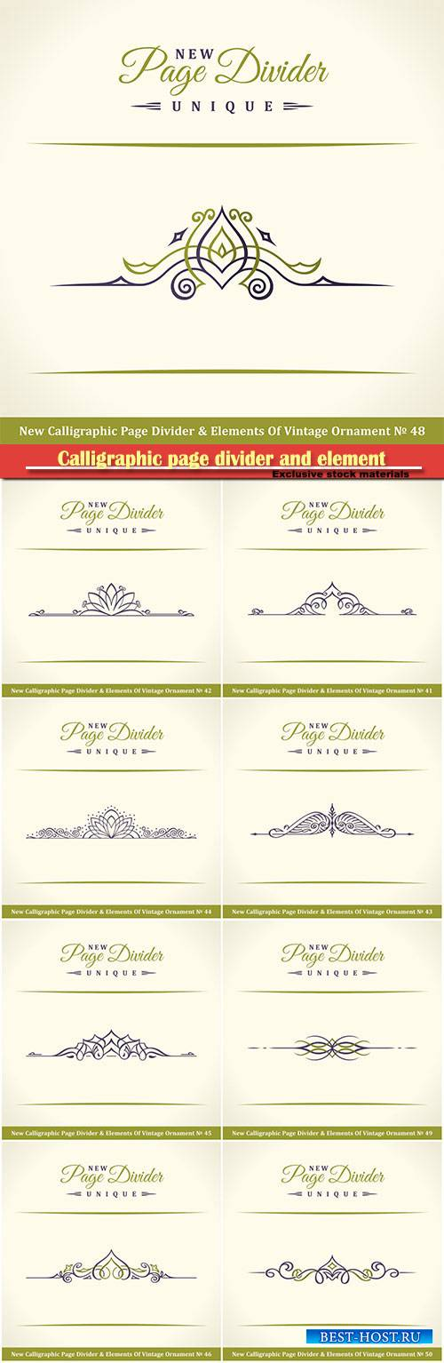 Calligraphic page divider and element of vintage ornament