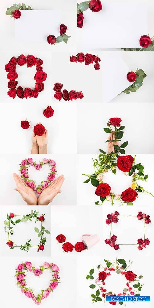 Цветочные композиции - 2 - Растровый клипарт / Flower Arrangements - 2 - Ra ...
