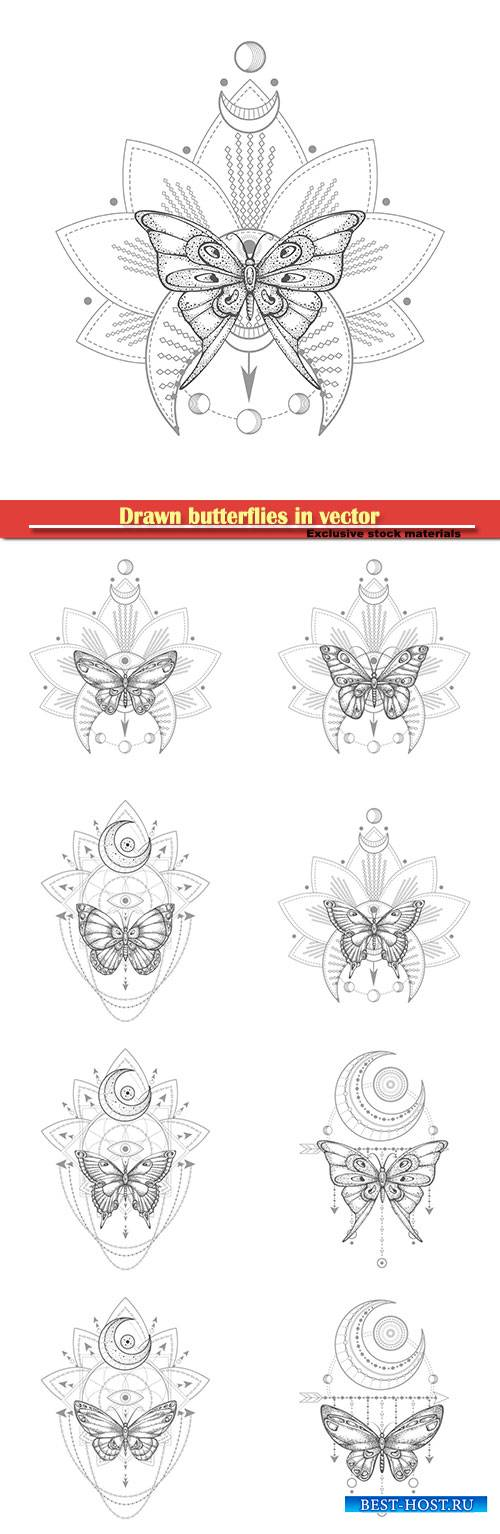 Drawn butterflies in vector, tattoo design