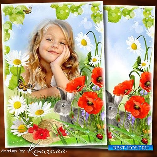 Летняяя рамка с зайчиком для детских фото на природе - Летнее настроение