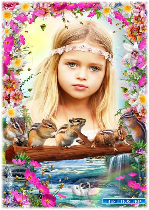 Рамка для Фотошопа - Весёлые бурундуки