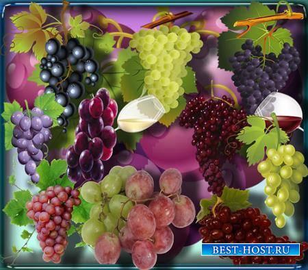 Png клипарты для фоторамки - Спелый виноград