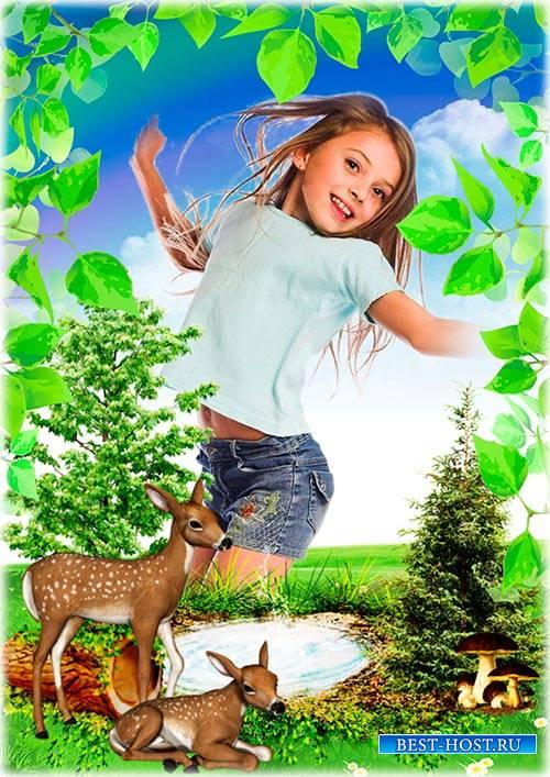 Рамка для летних детских фотографий - Летняя полянка