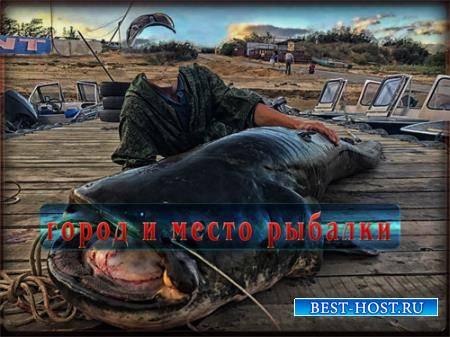 Мужской шаблон - Чудо рыбалка