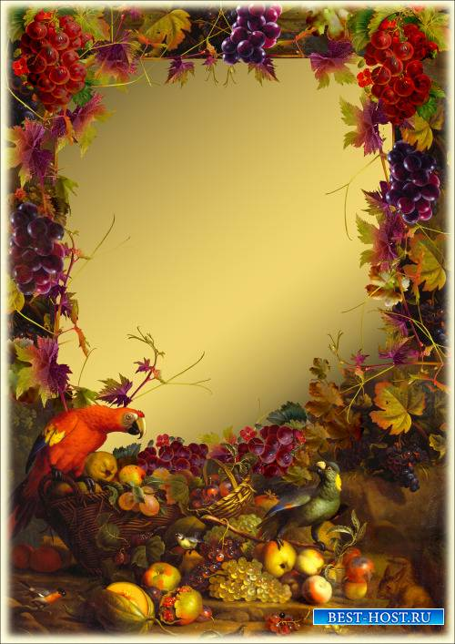 Рамка для Фотошопа - Натюрморт с попугаями