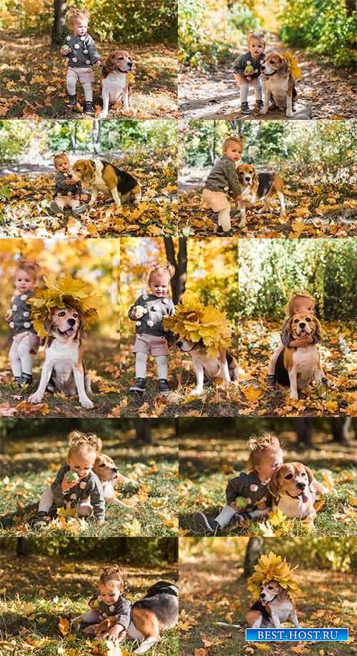 Девочка с собакой в осеннем парке - Клипарт / Girl with a dog in the autumn ...