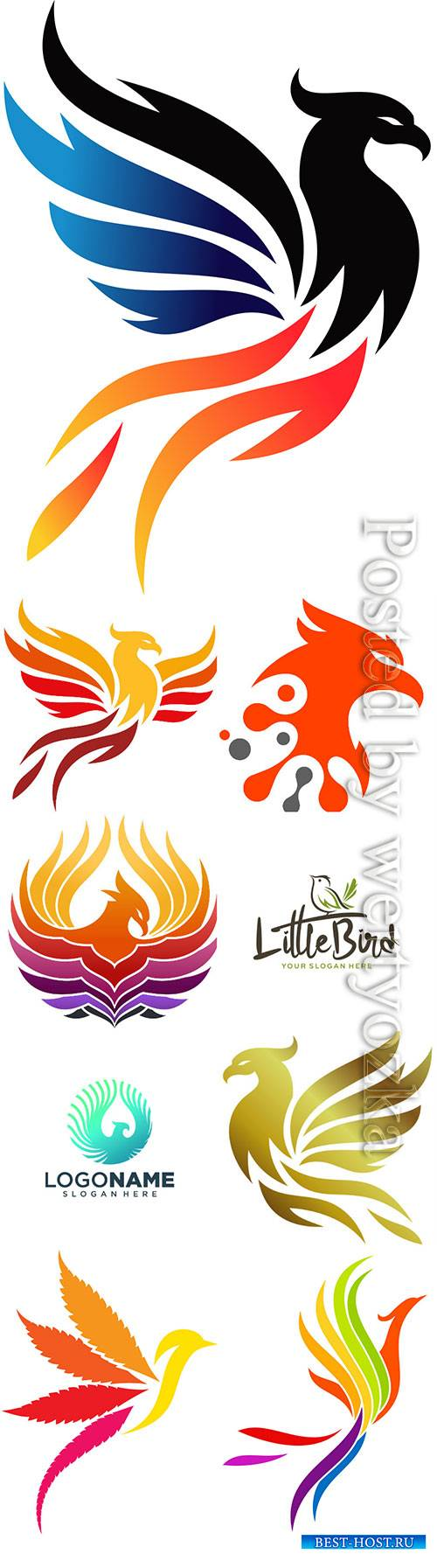 Phoenix logo collection vector illustration
