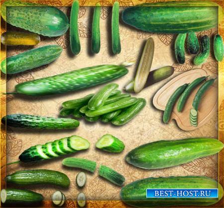 Прозрачные картинки для фотошопа - Зеленые огурцы