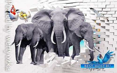 3D models template elephant animal bedroom wall