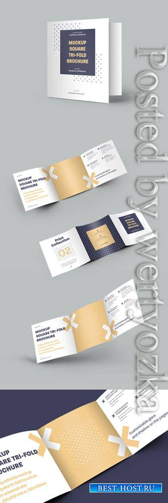 5 Square Trifold Brochure Mockups 322833912