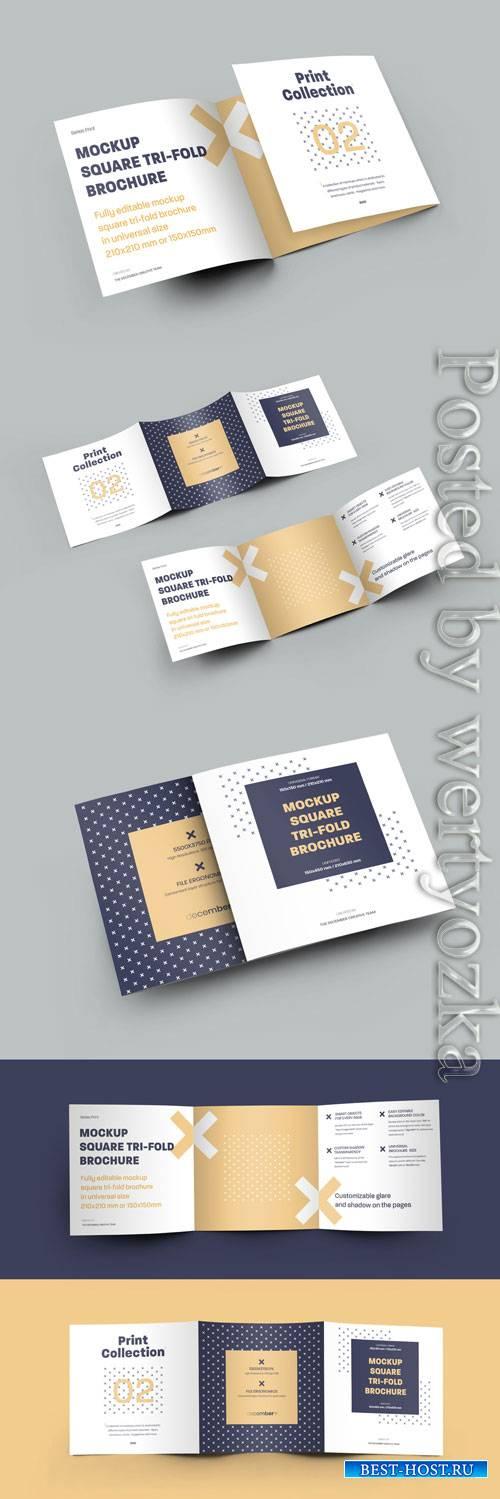 5 Mockup Set Square Tri-Fold Brochures
