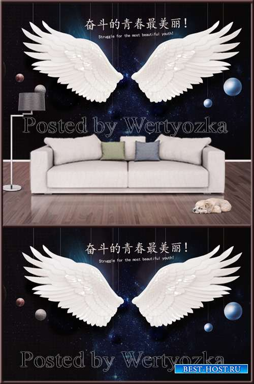 3D psd background wall angel wings