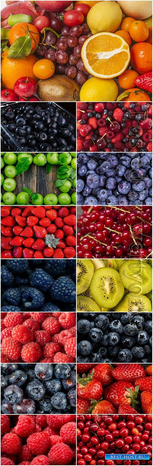 Fresh fruits and berries stock photo set